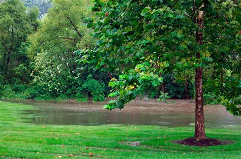 Get Rid Of Moisture In Basement by Get Rid Of Standing Water With Twin Oaks