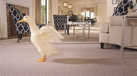 uncategorized awesome tile flooring stores near me tile store near me floor tilers near me