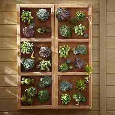 how to make a vertical wall garden build a vertical garden wall the great outdoors
