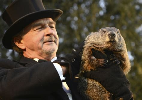 groundhog day uk tv groundhog day 2016 punxsutawney phil predicts an an early