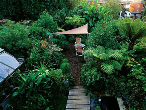 flowers shade garden design a shade garden hgtv