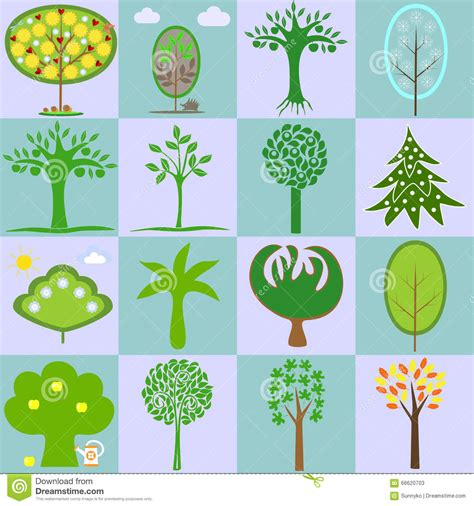 what type of tree lasts the types of trees forest types vary according to soil