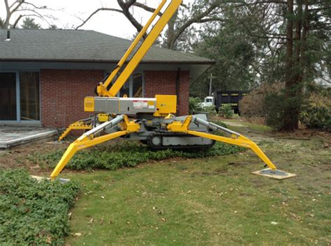 tree work welcome to 525 tree corp providing tree and plant care