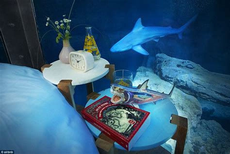 underwater themed bedroom airbnb launches its underwater bedroom where guests