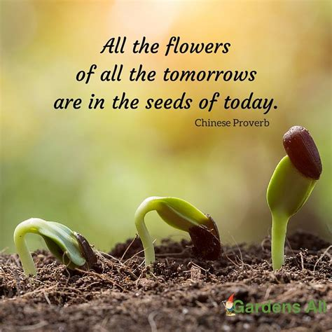 quotes on gardens and flowers garden memes quotes and sayings for growth and