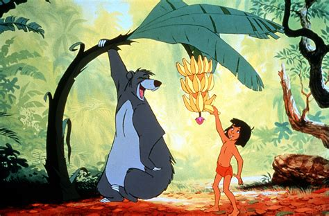 jungle book pictures how much do you about the real jungle book animals