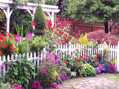 summer garden ideas cottage garden pictures photos and images for