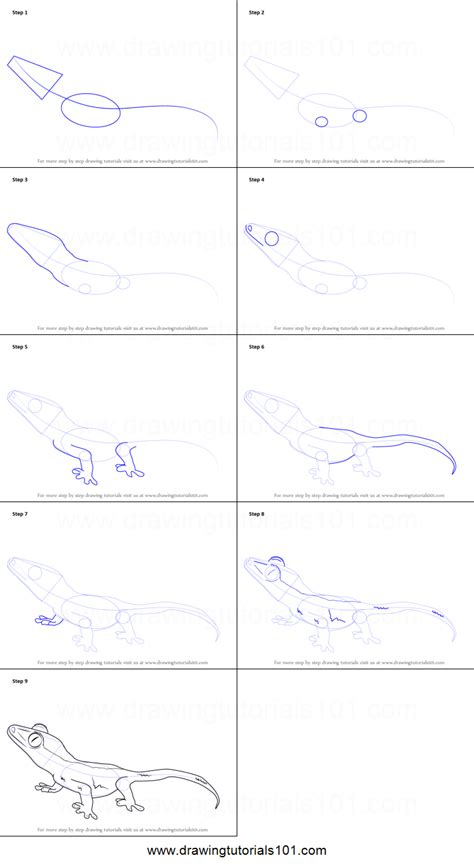 step by step how to draw a crested gecko printable step by step drawing