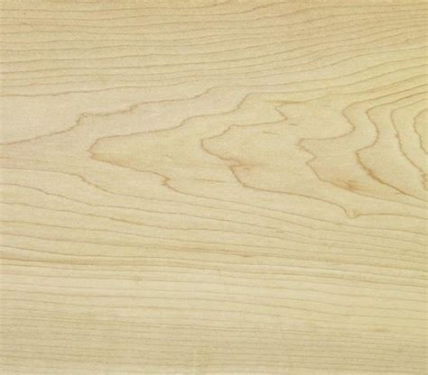 maple woodworking maple the pros and cons of different types of wood