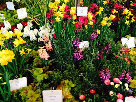 flower garden show northwest flower garden show author jacki delecki
