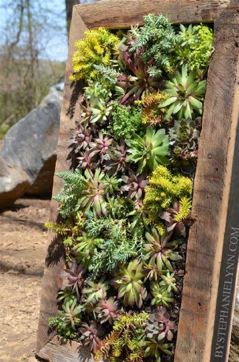 how to make a wall garden top 10 diy outdoor succulent garden ideas top inspired
