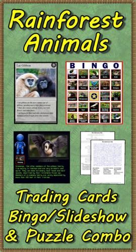 how to make trading cards on the computer 17 best images about science rainforest animals on