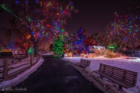 what time does zoo lights zoo lights at the denver zoo photos