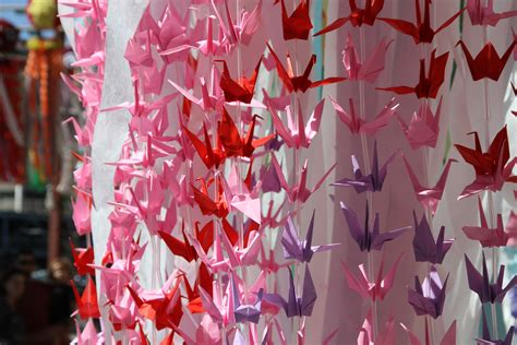 origami los angeles photo gallery 1