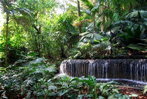 forbidden garden rock menu singapore botanic gardens check out singapore botanic