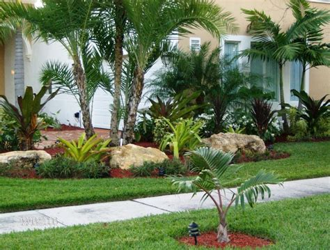 tropical front garden ideas tropical front yard landscaping ideas with palm trees