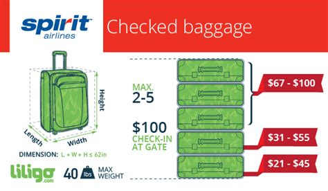 united airlines checkin baggage fee the low on spirit airlines baggage policies liligo