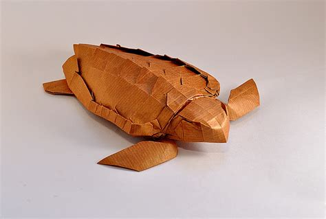 origami sea turtle this week in origami rabbit coming out the side of a