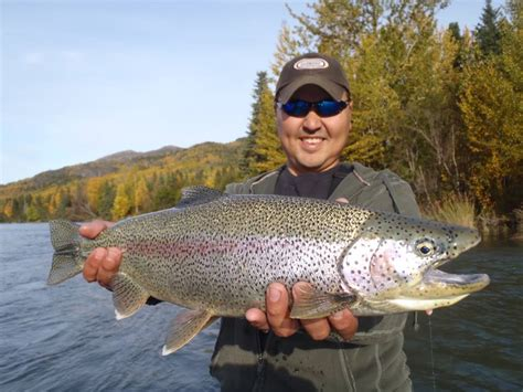 bead fishing bead fishing targeting alaskan trout and char with