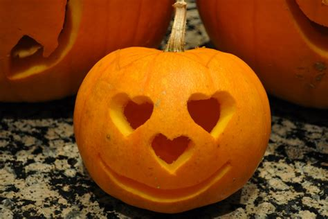 pumpkin cheek the patterson family pumpkins
