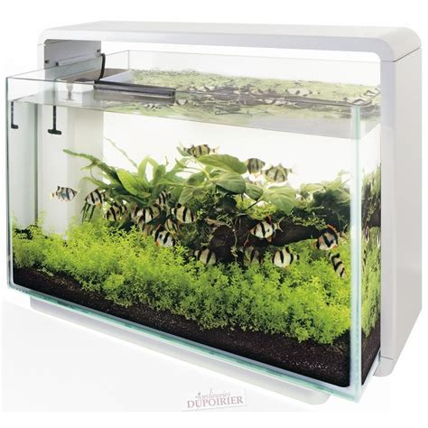 aquarium home 60 blanc de superfish aquadistri pas cher livr 233 de