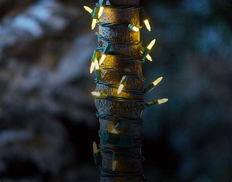 noma lights canadian tire