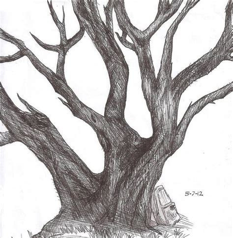 tree realistic 61 best images about how to draw realistic trees plants