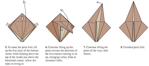 petal fold origami the of origami finesse