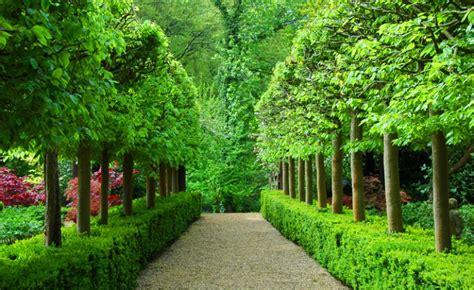 world best flower garden best flower gardens in the world gardening flower and