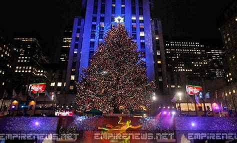 nyc tree artificial trees nyc 28 images the nyc tree hunt get