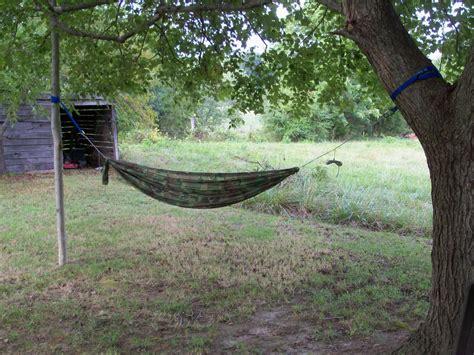 one tree setup hammock forums gallery