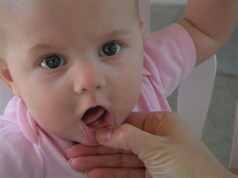 teething for babies teething tooth development of your child dental office