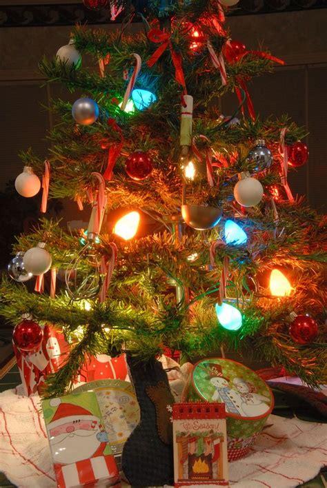 tree with big lights big lights classic tree