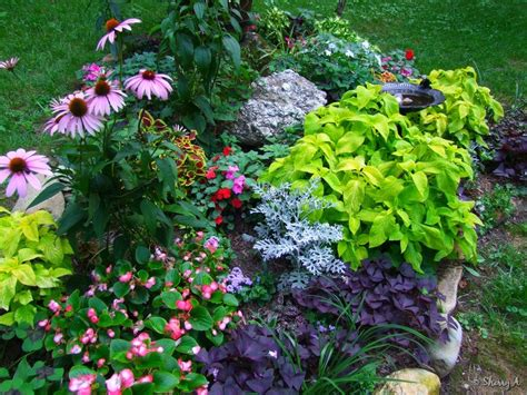 flower garden landscaping ideas landscaping ideas flowers images