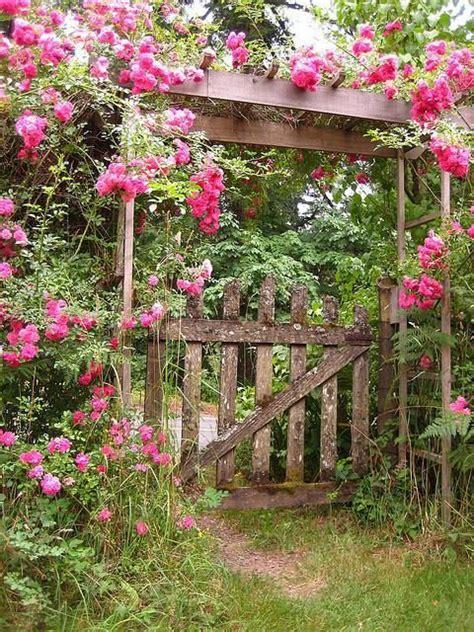 garden gate flowers another garden gate flowers flowers