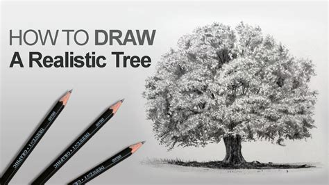 tree realistic how to draw a tree realistic