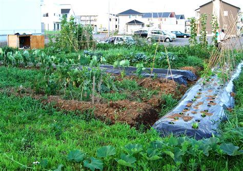 free vegetable garden planner vegetable garden planner free the garden inspirations