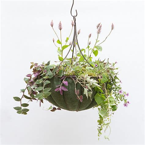 hanging basket chandelier chandelier hanging basket terrain