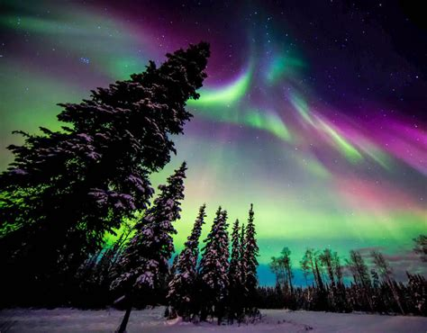 what to do with lights northern lights why you don t need to leave the uk to see