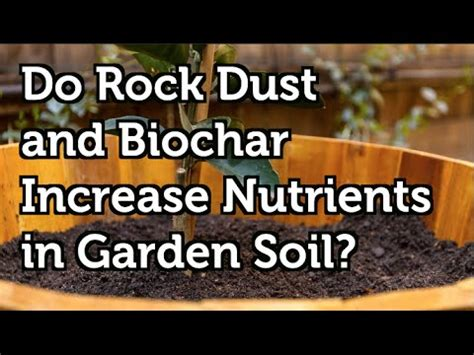 rock dust garden do rock dust and biochar increase nutrients including