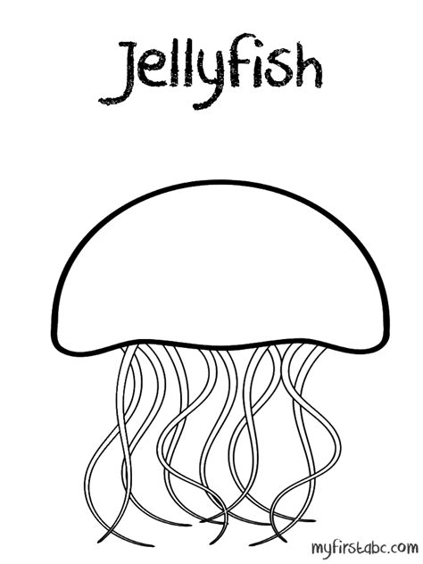 wildlife jellyfish coloring pages barriee