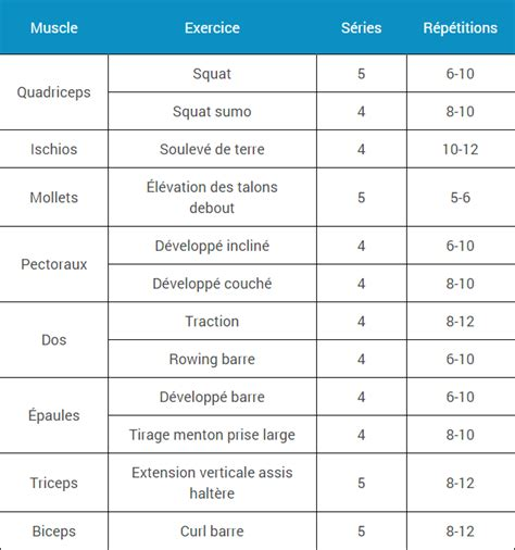 programme espace musculation