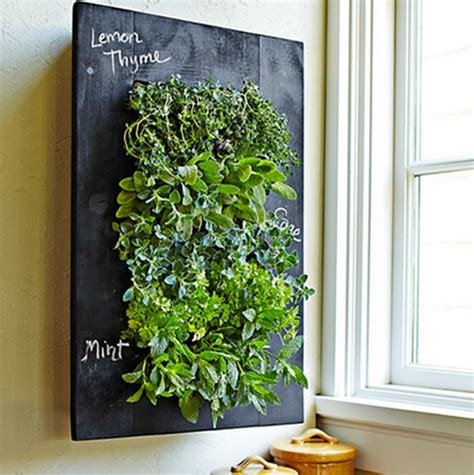 how to make a wall garden 8 easy ways to create a vertical garden wall inside your home