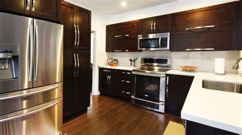 panda kitchen cabinets kitches gallery
