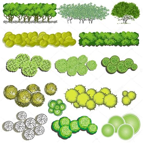 tree items trees and bush item top view for landscape design vector
