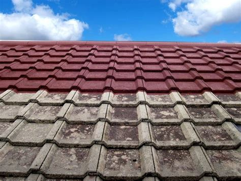 spray painting roof tiles roof painting
