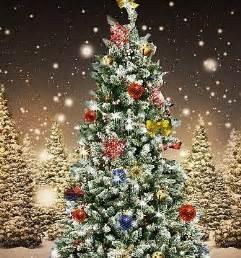geschichte weihnachtsbaum weihnachtsbaum 2
