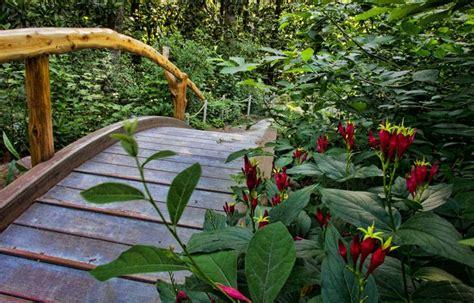 photos of gardens blomquist garden duke gardens