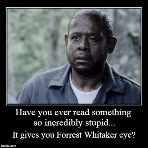 read so eye eye imgflip