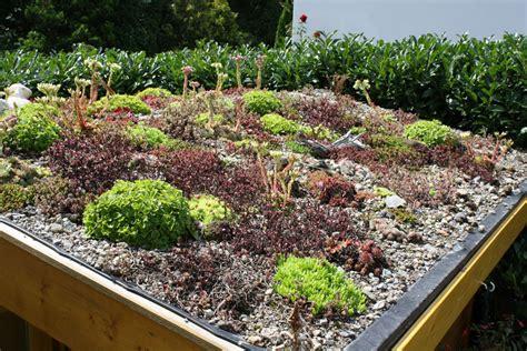 Der Neue Garten Ratgeber by Mein Hobby Der Garten Dachbegr 252 Nung
